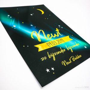 Dit speciale kaartje is speciaal voor Newt ontworpen. Op het kaartje staat het noorderlicht afgebeeld. Sierlijk goud lettertype, de maan en de sterren.